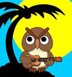 UkeOwl avatar
