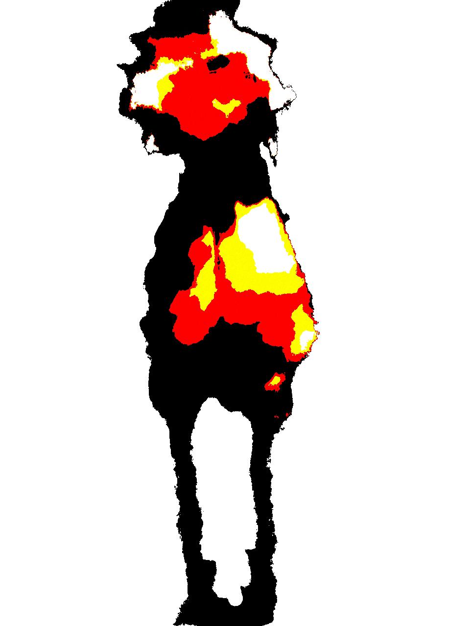 ukulenoob avatar